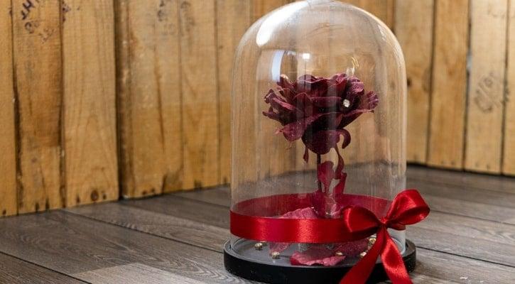 DIY κατασκευές για τον Άγιο Βαλεντίνο Λουλούδι σε καμπάνα